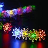 リーダーテク(lederTEK) ソーラー 防雨防水型 カラー 蓮花形 電飾 イルミネーション LED 6m 30球 2点滅モデル クリスマス ライト 新年 飾り付け