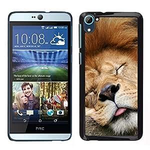// PHONE CASE GIFT // Duro Estuche protector PC Cáscara Plástico Carcasa Funda Hard Protective Case for HTC Desire D826 / Funny Sleeping Lion Tired Sleepy Cute /