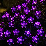Flower Solar Powered Christmas Lights 20 LED 4.8M Decorative Blossom Fairy String Light for Garden, Lawn, Patio, Xmas Tree, Holiday, Party, Home, Indoor, Outdoor Decorations (PURPLE)