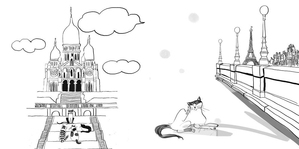 Amazon Com Cats In Paris A Magical Coloring Book 9780399578274