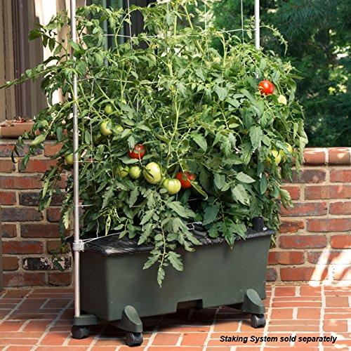 Novelty EarthBox 80101 Garden Kit, Green