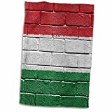 3dRose Carsten Reisinger Illustrations - National flag of Hungary painted onto a brick wall Hungarian - 12x18 Hand Towel (twl_155244_1)