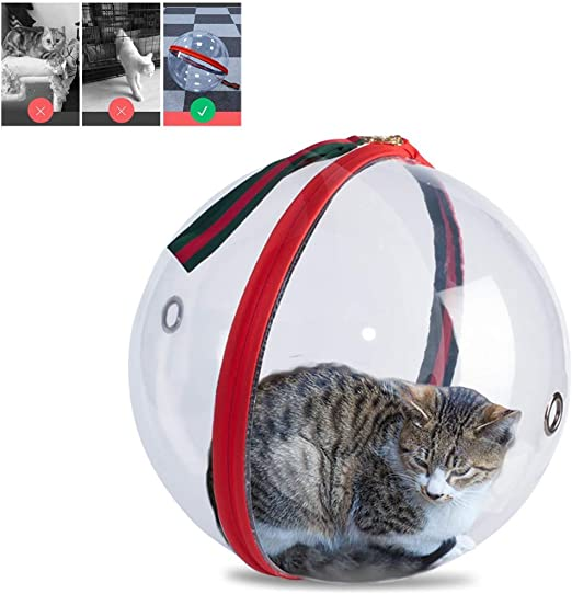 Difícil Transportador De Mascotas para Gatos Perros Pequeños Transparencia Panorámica Portador De Perro Mochila Viaje Esférico Respirable para De Viaje Excursionismo Camping(φ : 35cm): Amazon.es: Productos para mascotas