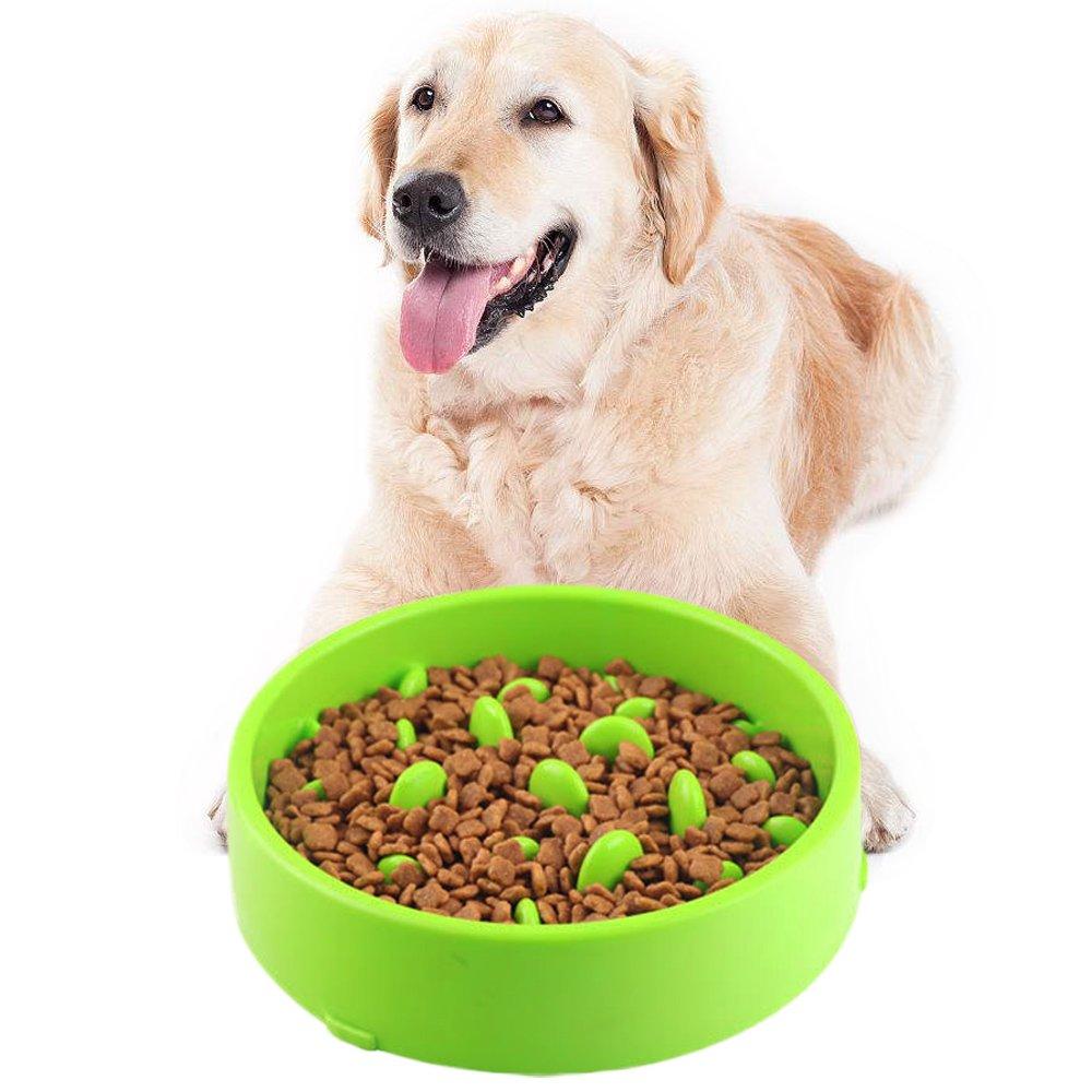 H&Zt Slow Pet Feeding Bowl Non Skid Anti choke Bowl for Dog Cat Healthy Pet Feeding Bowl, Green