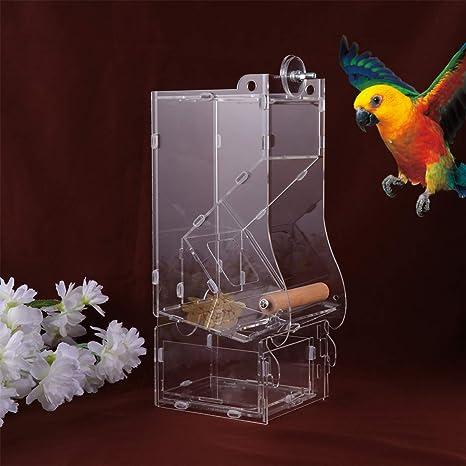 POPETPOP comedero de pájaros sin Jaula para Jaula - comedero para ...