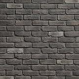 Koni Brick Old Chicago Grey 10.76 sq. ft. Flats 0.65 in. x 8.20 in. x 2.50 in. Thin Brick