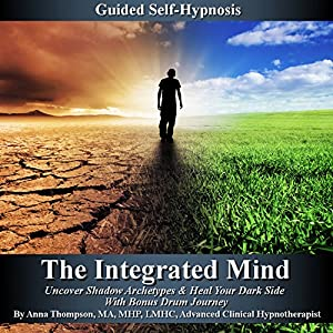 The Integrated Mind Audiobook