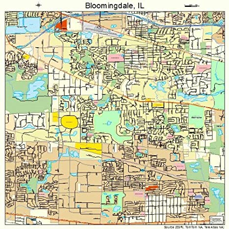 Amazon Com Image Trader Large Street Road Map Of Bloomingdale