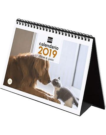Finocam 780323019 - Calendario sobremesa 2019