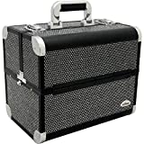 Sunrise c3029 Professional Makeup Cosmetic Train Large Case Organizer Storage with 6 Trays Dividers Krystal Black