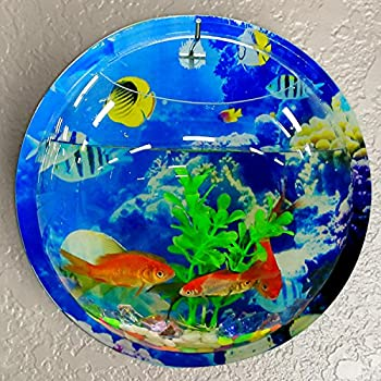small screenshot 1 office fish. wall fish tank coxeer 9in sea world acrylic hanging mounted small screenshot 1 office