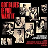 Got Blues If You Want It  [Import]