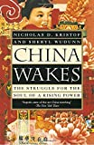 img - for China Wakes: The Struggle for the Soul of a Rising Power by Nicholas D. Kristof (1995-08-01) book / textbook / text book