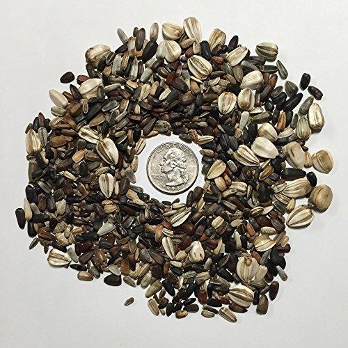 Buy bulk sunflower seeds packs