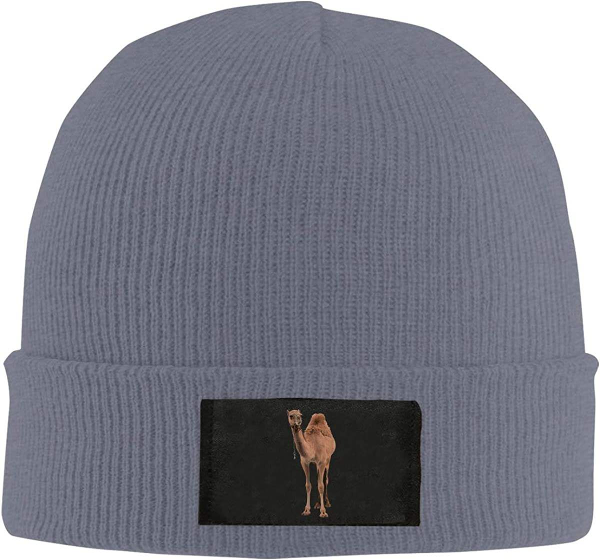 Animal Camel Men /& Womens Knitted Hat Comfortable Snowboarding Hat