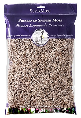 Super Moss 26914 Spanish Moss Preserved, Natural, 8oz (200 cubic inch) (Soil Decorative Cover)