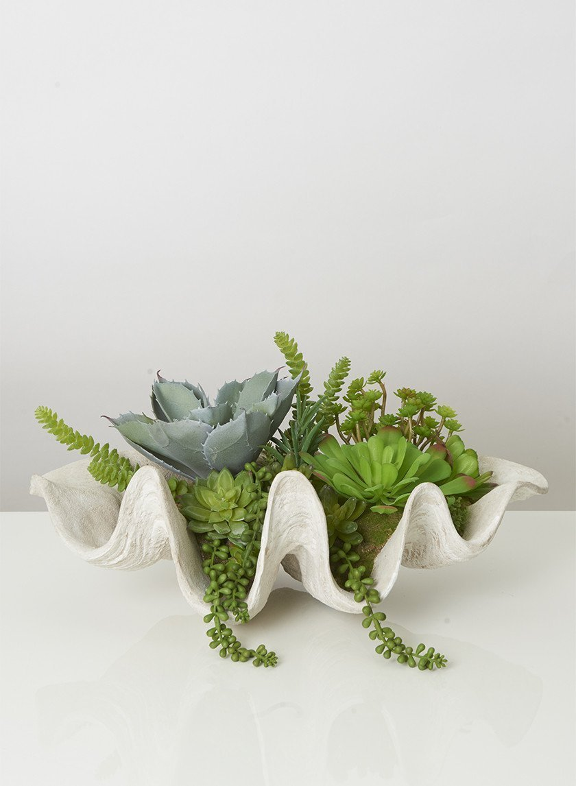 Mixed Faux Succulent in Giant Clam Shell