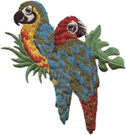 Blue 3-1//2 x 4-1//2 Inch One-Of-a-Kind Paradise Island Parrot MaCaw Birds Iron On Embroidered Applique Patch {Yellow Red Green Single Count Custom and Unique Black /& White Colored}