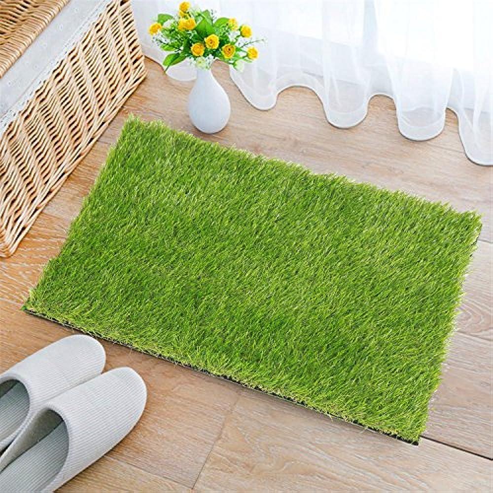 Artificial Grass Doormat Indoor Outdoor Green Lawn Rug Pet