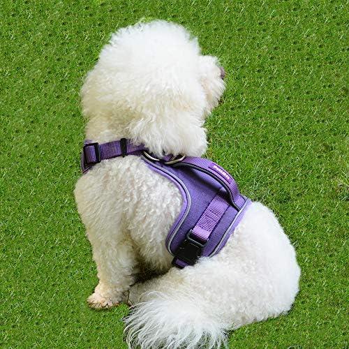 Neck//Chest Adjustable Dog Harness No Pull Dog Harness Dog Harness for Small Medium Large Dogs Small, Red PETLOFT Dog Harness Gentle Leader