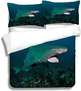 RLDSESS Shark Bedding Comforters, Queen Size,Grey Nurse Shark Tweed Heads New South Wales Australia,3 Piece Bedding Set with 2 Pillow Shams