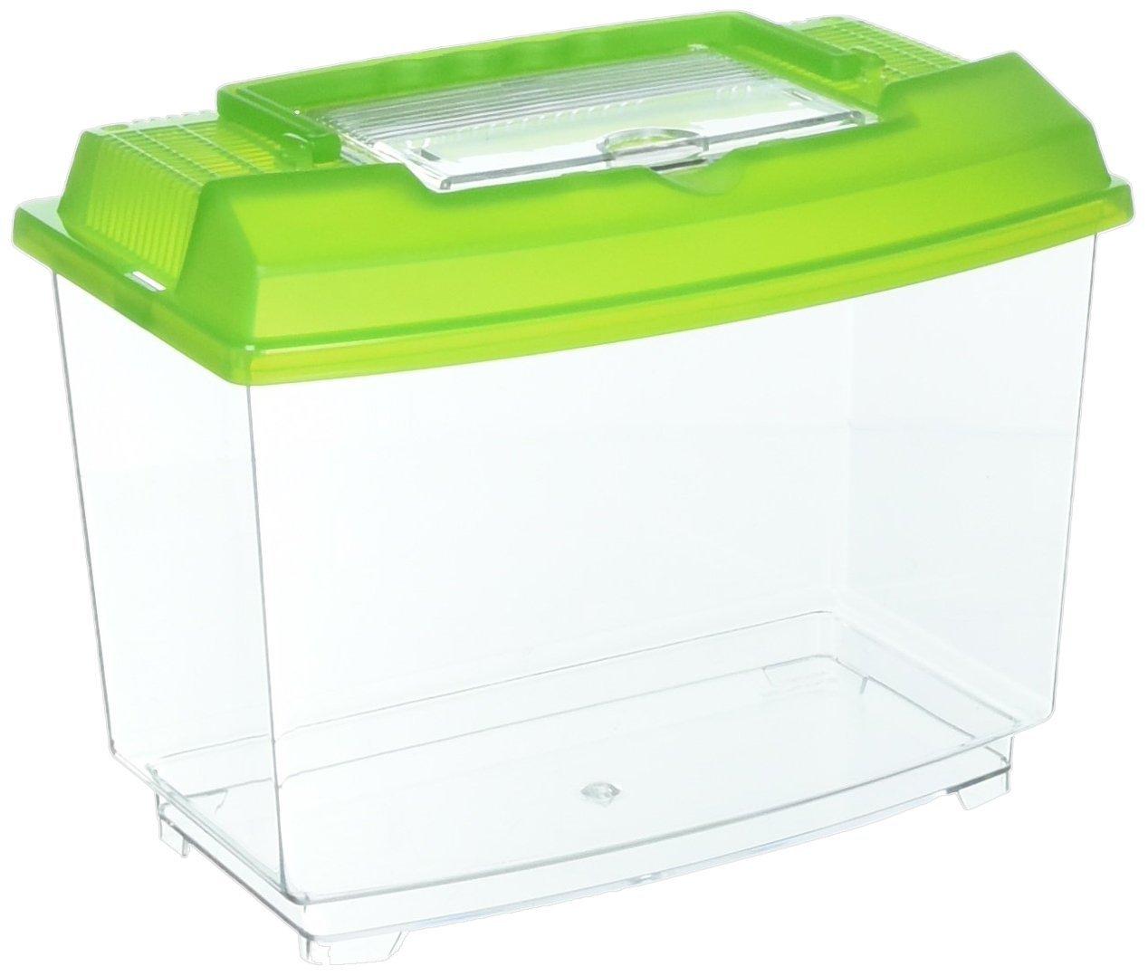 Penn-Plax NW25, Acuario de plástico para acuariofilia 4 L, Colores surtidos: Amazon.es: Productos para mascotas