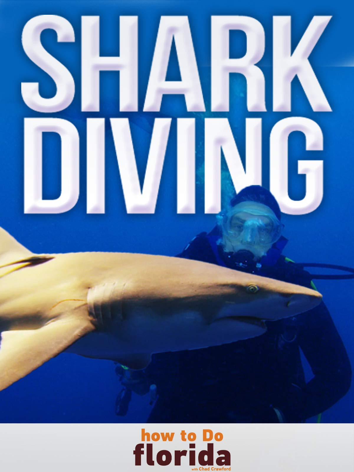 Clip: Shark Diving Adventure