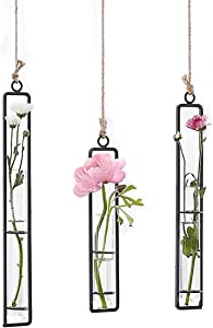 Ivolador 3 Pack Different Length Test Tube Hanging Glass Planter Bud Flower Vase Terrarium Container for Home Decoration Green Plants Wedding