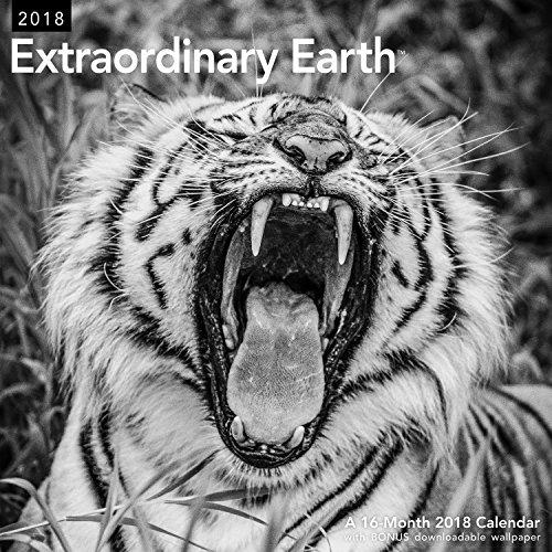 Black Rhinoceros Animals (2018 Extraordinary Earth Wall Calendar (Mead))