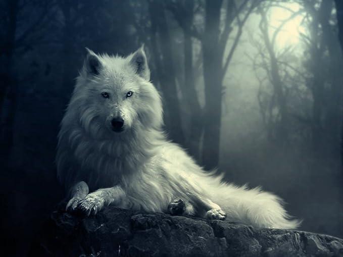 Gwynbleid, el lobo blanco - Alistar Reep, Rey de las Bestias 61ZO7zNPmoL._AC_SX679_
