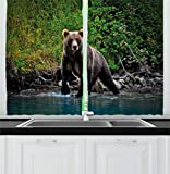 Ambesonne Cabin Decor Kitchen Curtains, Grizzly Brown Bear in Lake Alaska Untouched Forest Jungle Wildlife Image, Window Drapes 2 Panel Set for Kitchen Cafe, 55 W X 39 L Inches, Green Brown Blue For Sale