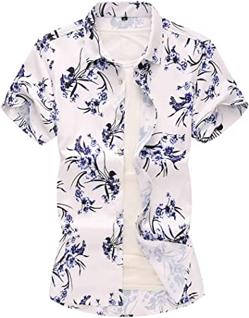 RelaxLife Camisa de Manga Corta para Hombre Camisa Hawaiana ...
