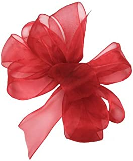 "product image for Offray Berwick LLC 424193 Berwick Simply Sheer Asiana Ribbon - 5/8"" W X 25 yd - Red Ribbon"