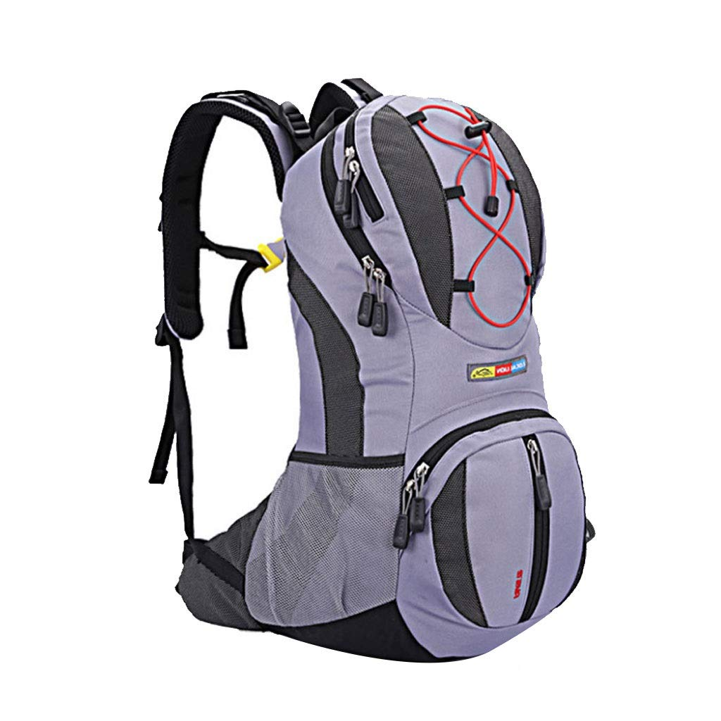 PURPLE Cycling Water Bag Backpack 22L MultiFunction Bicycle Bag Outdoor Sports Mountaineering Mountain Bike Bag (color   Green)