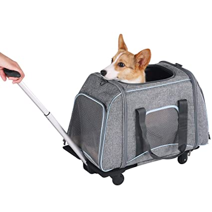 c2d4721a0 Petsfit Not Airline Approved Pet Rolling Carrier with Removeable Wheels for  Pets up to 22 Pounds