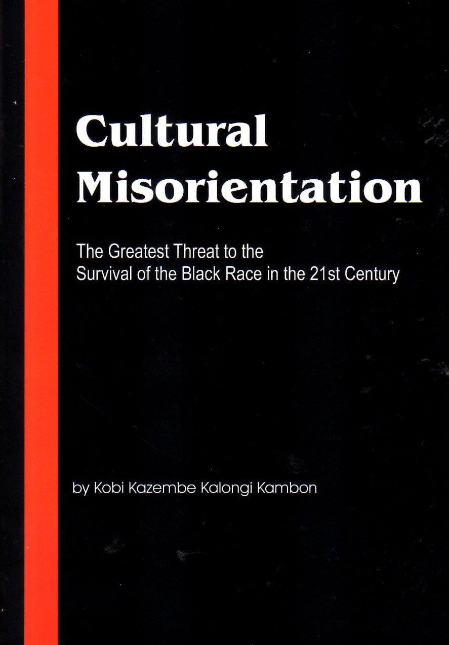 Cultural Misorientation ebook