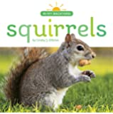 Squirrels (In My Backyard)