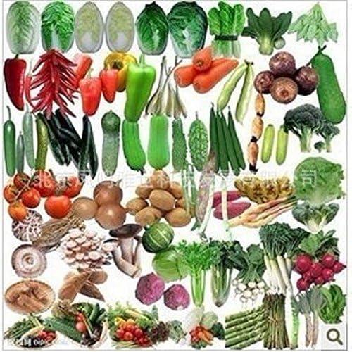 semillas de hortalizas orgánicas calientes verduras paquete de ...