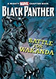 Best Teen Chapter Books - Black Panther: The Battle for Wakanda Review