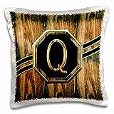3D Rose Elegant Faux Gold and Wood Grain Monogram Letter Q Pillow Case, 16'' x 16''