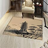Asian Area Rug Carpet Old Stone Tiered Tower Vintage Taoist House of Faith Historical Illustration Living Dinning Room and Bedroom Rugs 30''x40'' Pale Brown Black