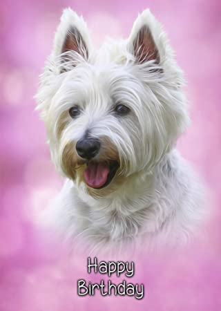 Westiewest Highland Terrier Birthday Card 8x6 Mix Match On 8x6