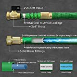 Blueberry Expandable and Flexible Garden Hose - Solid Brass Fittings & Strongest Triple Core Latex, 8 Pattern Spray Nozzle 3/4 US Standard Easy to Storage Kink Free Compact and Durable (50 Feet)