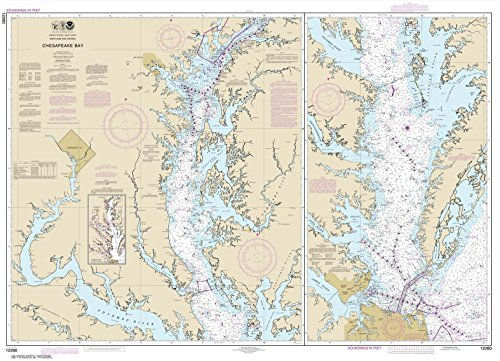 Paradise Cay Publications NOAA Chart 12280: Chesapeake Bay 33.7 x 46.5 (TRADITIONAL PAPER)