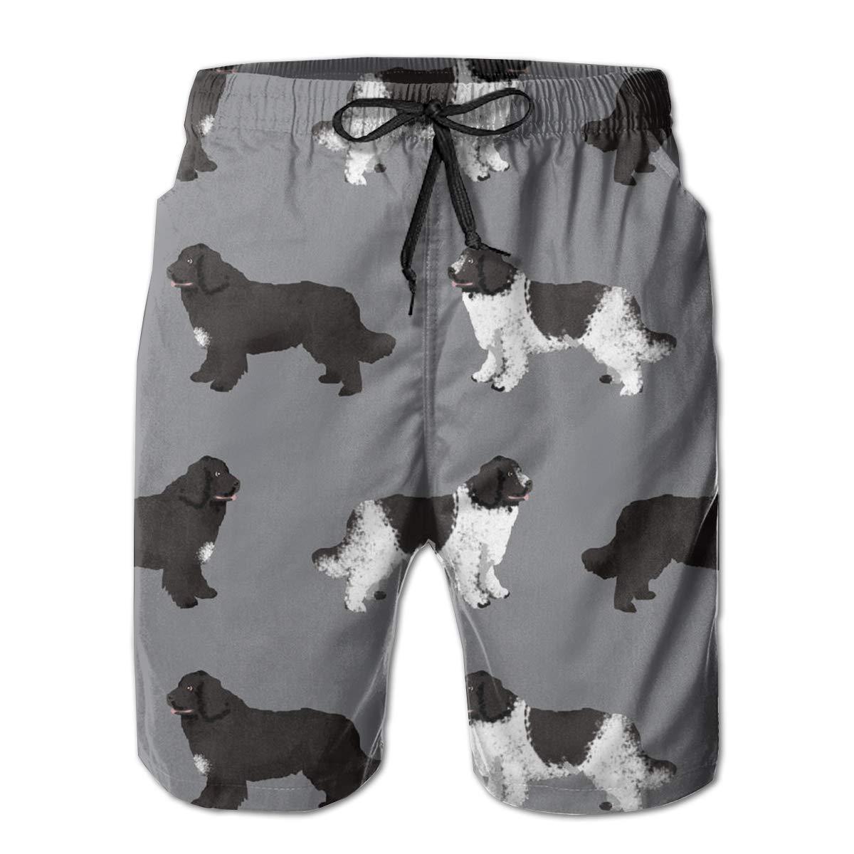 YongColer Boardshort Newfie Dog Boys Teen Quick Dry Sports Trunks