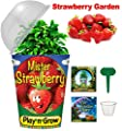 Children's Organic Plant Kit - Strawberry Window Garden - Complete Indoor Grow Set - Seeds, Soil, Planter, Greenhouse Dome, Water Tray & Cup, Growing Guide, Diary. Unique Educational DIY Kid's Gift.