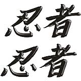 """Size is 2.6"""" tall x 6."""" wide, Kawasaki Ninja ZX10 ZX12 ZX14 ZX9 ZX6 600 1000 ZX6RR 250R 300 Ninja Kanji Decal sticker set Black"""