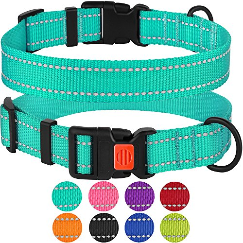 (CollarDirect Reflective Dog Collar, Safety Nylon Collars for Dogs with Buckle, Outdoor Adjustable Puppy Collar Small Medium Large (Neck Fit 10