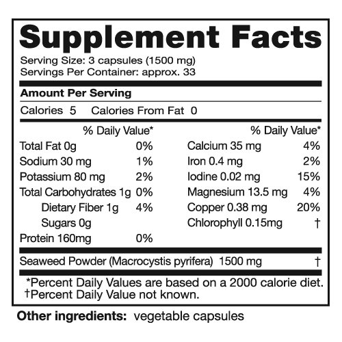 Seagate Products Freeze-Dried Seaweed Herbal Supplement 500 mg 100 Capsules (pack of 2)