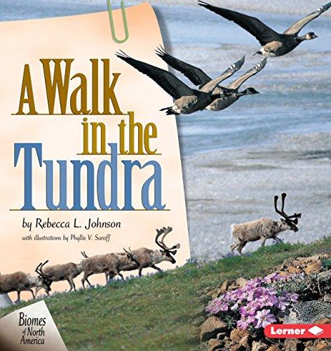 A Walk in the Tundra (Biomes of North America) (Bear Princess Polar)